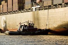 r_170817183_beat0050_a (Mitch Waxman) Tags: cargodocks newyorkcity newyorkharbor newarkbay tugboat newyork