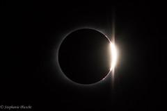 """Diamond Ring"" Effect (stephaniepluscht) Tags: tennessee edgar evins evans state park center hill reservoir august 21 2017 solar eclipse totality diamond ring effect"