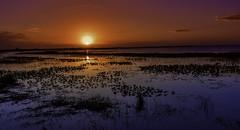 Lake Kissimmee Sunset (Charles Patrick Ewing) Tags: sunset sky clouds landscape water lake blue orange pink yellow sundown seascape nature natural outoddors night light bright beautiful all florida