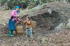 _MG_8285.0312.Sủng Máng.Mèo Vạc.Hà Giang (hoanglongphoto) Tags: asia asian vietnam northvietnam northeastvietnam people hmongpeople women hmongwomen dailylife motheranddaughter hmongmotherandaughter mother sonny girl canon canoneos5dmarkii canonef85mmf12liiusmlens đôngbắc hàgiang mèovạc sủngmáng người cuộcsống đờithường ngườihmông phụnữ phụnữhmông mẹvàcon mẹconhmông congái bégái cuộcsốngvùngcao thehmong