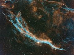 The Witch's Broom - NGC6960 (farhangzia) Tags: nebula astronomy astrophotography narrowband bicolor westernveil witch universe space ngc6960 astrometrydotnet:id=nova2205659 astrometrydotnet:status=solved