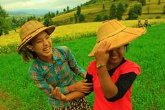 field workers taking a break (hmong135) Tags: myanmar burma workers women pindaya