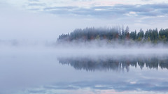 Foggy lake (Juh-ku) Tags: foggylandscape fog foggy lake forest mist reflection water night summer finland