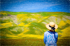 Painted Hills (Mimi Ditchie) Tags: carrizo carrizoplains spring flowers wildflowers painting painterly topaz impression topazimpression selfie getty gettyimages mimiditchie mimiditchiephotography