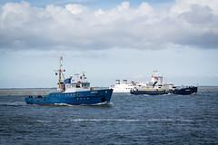 Urlaub IJsselmeer - Lauwersoog-7