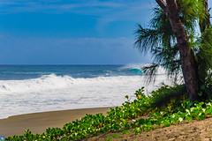 Wave of the year (bffpicturesworld) Tags: wild landscape beautiful wave virgin secretspot surf surfing paradise ocean reunionisland iledelareunion island
