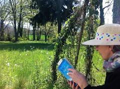 Le livre délivre, ou : le plaisir de la lecture (Gérard Farenc (slowly back) !) Tags: livre book lecture reading jardin garden extérieur été summer season saison