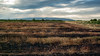 Popovac Apocalipto (In color!) (coa75) Tags: landscape burn fields ecology nature sky sureal dramatic clouds sunrays