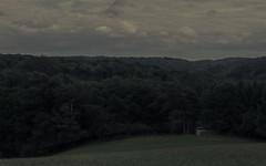 The Shed at the Forest (Netsrak) Tags: eifel wald baum bäume himmel wolke wolken landschaft schuppen hütte wiese