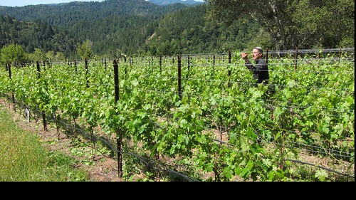 Joseph Fessio checking up on his wine grapes