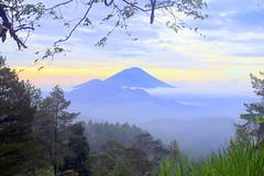good morning mount Agung (wisnadi) Tags: morning sun sunrise mount mountain green forest light trees woods cloud sky blue