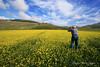 Omaggio ad un amico. (Castelluccio di Norcia) (francescociccotti1) Tags: castelluccio panorama esterna amici colori nuvole ripresefotografiche