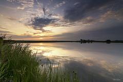 A nice way to start the day (Thijs de Bruin) Tags: polder dutch nederland paars purple blauw water dijk riet groen spiegel mirror orange oranje sunrise wolken clouds