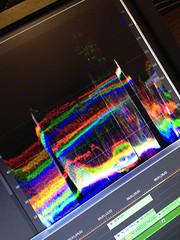 231 - Wavy Gravy (jbpro) Tags: colorgrading waveform adobe premiere pro 365 days photo challenge august