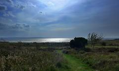 Västerhavet (Ken-Zan) Tags: beach kattegatt mare kenzan ljunghav halland water grimsholmen falkenberg glitter