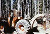 1975. Salvaging lodgepole pine infested with mountain pine beetle. (USDA Forest Service) Tags: usda usfs forestservice foresthealthprotection region6 r6 stateandprivateforestry forestinsect forestentomology lodgepolepine salvage logging ranger skidder mountainpinebeetle 1975