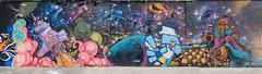 Nubian • Spel • Shine • Zico • Cole (tomatokid99) Tags: graff graffiti streetart art urbanart sprayart montpellier hérault france verdanson cousinade nubian cole shine odm spel zico singe monkey fresque mur mural space