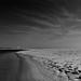 Alone on the beach II