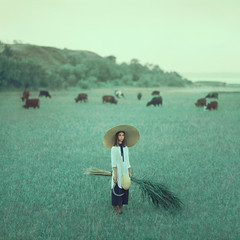 *** by oprisco - www.facebook.com/opriscophotography