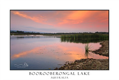 Tranquil scene Boorooberongal Lake Penrith (sugarbellaleah) Tags: lake boorooberongallake reeds grasses tranquility sunset peaceful water reflections nature environment reserve australia leisure recreation chillout relaxation clouds sky penrithnsw
