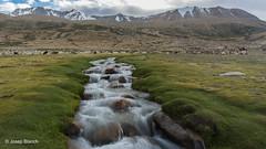 04 Ladakh (josep_blanch) Tags: ladakh india budismo guiussepi josepblanch tsomoriri tso moriri
