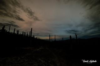 Reserva de la biosfera Puebla