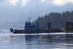 Prince Rupert, BC. Canada (GO®D WEISFLO©K) Tags: princerupert bccanada fishing gordweisflock weisflock salmon ocean