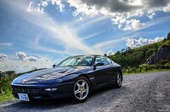 Ferrari 456GT (Scuderia Blue) Tags: ferrari ferrari456gt 456