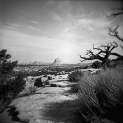 Ghost Rock (jimmietolliver) Tags: blackandwhite ghostrock standdeveloped aristaedu holga monochrome rodinal utah landscape tree sky grass road path dreamlike surreal