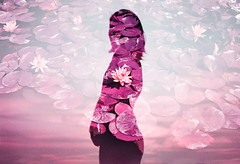 Love Lotus (Hayden_Williams) Tags: girl woman water lady figure silhouette shadow sky summer sunset sun surreal sunlight spring bloom blossom lotus lily lilipads person purple violet indigo analog analogue multipleexposure doubleexposure