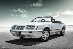 Anniversary Edition (DL_) Tags: ford mustang gt350 anniversaryedition oxfordwhite convertible sportscar transportation automotive olympusomdem5mkii
