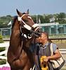 (spotboslow) Tags: suffolkdowns boston revere massachusetts thoroughbred horseracing cinderblock