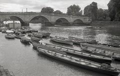 rowed trip (OhDark30) Tags: olympus 35rc 35 rc film 35mm monochrome bw blackandwhite bwfp fomapan 200 rodinal richmond bridge river thamespath rowing boats thamescutter waterman