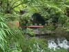 Kawadoko in Kifune (toshto) Tags: 貴船神社 京都 山 水 森 神社 寺院 自然 宇宙 川 御神木 kifune kyoto japan mountain water wood shrine temple nature river universe sacredtree