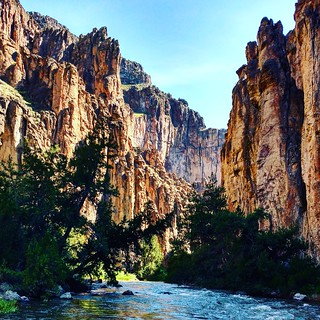 Bruneau Wild and Scenic River