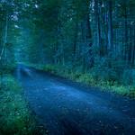 twilight path thumbnail