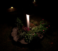 _MG_1688.CR2 (jalexartis) Tags: lighting backyard landscaping nightphotography night nightshots