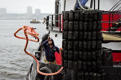 r_170903429_beat0053_a (Mitch Waxman) Tags: 2017greatnorthrivertugboatrace 42ndstreet buchanan donjon fireboatjohnjharvey hudsonriver midtown millerslaunch mistert newyorkcity newyorkharbor tugboat workingharborcommittee newyork