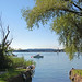 Chiemsee - Blick von der Fraueninsel auf den Chiemsee (2)