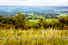 Barbed wire (kofiskingley) Tags: nature natural landscape landscapes south downs west sussex hills mountains national park sunrise early morning golden hour sigma nikon d7100 wire barbed bokeh depth field