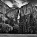 A View Across Cook's Meadow to Yosemite Falls and Peaks of the Sierra Nevada (Black & White, Yosemite National Park)
