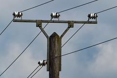 230V / 400 V Power Pole (betadecay2000) Tags: power pole germany deutschland freileitung 230 v volt 400 voltage low strom insulator insulators isolatoren isolator prozellan keramik glas elektrizität strommast maste mast masten line pylon stromleitung outdoor