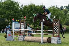 A9903714_s (AndiP66) Tags: springen derby aesch bl baselland 2017 juni june 13august2017 pferd horse schweiz switzerland kantonbaselland cantonofbaselland concours wettbewerb horsejumping springreiten pferdespringen equestrian sports pferdesport sport sony alpha sonyalpha 99markii 99ii 99m2 a99ii ilca99m2 slta99ii sony70400mm f456 sony70400mmf456gssmii sal70400g2 amount andreaspeters