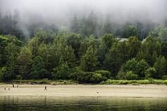 Junea_Alaska_tracu_7