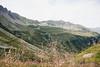Balade (Louise Feige) Tags: montagne randonnée alpes nature paysage sauvage animaux vache travel voyage été sport outdoor montblanc contamines