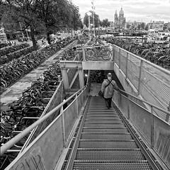 een miljoen fietsen en meer, zelfs beroemde Nederlanders fietsen (ahwou) Tags: amsterdam bicyles fietsenstalling ladiesbikes mensbikes childrensbikes kinderfietsen damesfietsen herenfietsen stairs