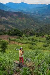 Co jsme proti Matce Přírodě? (zcesty) Tags: vietnam9 pole hory vietnam dosvěta khánhhoà vn