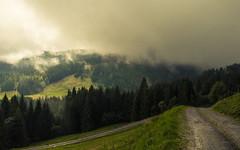 Lone Wanderer (Netsrak) Tags: baum bäume wanderer licht wolken wolke alpen berge gebirge