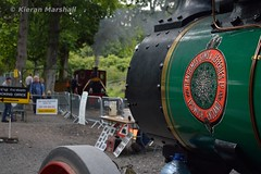 Stradbally, 7/8/17 (hurricanemk1c) Tags: railways railway train trains ireland industrialrailway narrowgauge stradbally stradballywoodlandsrailway 2017 lm44 bórdnamóna irishturfboard steamloco andrewbarclay clonsatworks ransomessimsjefferies tractionengine