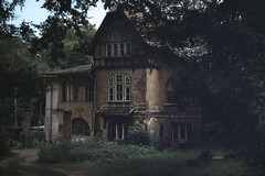 Residence (Tomasz Aulich) Tags: house residence home plant tree grass wood fence gate brick rust windows colour green dark darkness poland europe lodz popiolystreet sky blue building architecture nikon sigmalens road